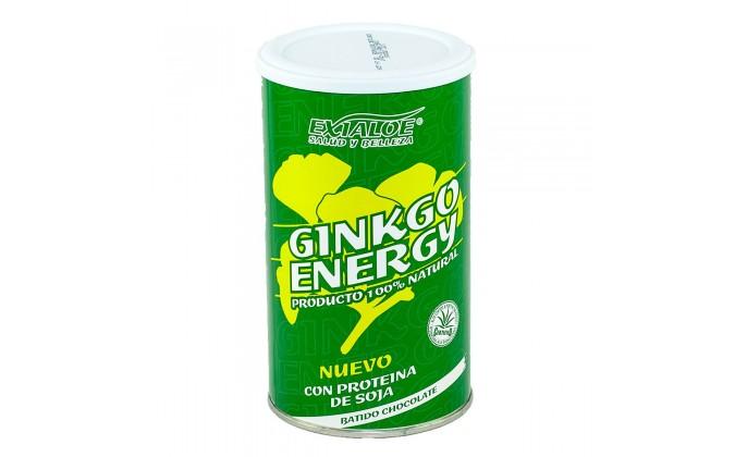 Batido Ginkgo Energy