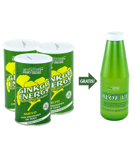 Pack batidos Ginkgo Energy ( 2 chocolate y 1 Vainilla)